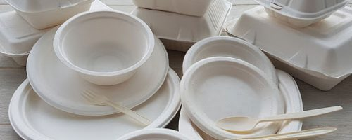 disposable -tableware -bagasse